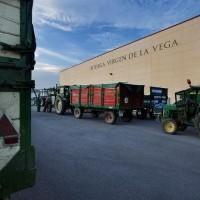 Bodega Cooperativa Interlocal Virgen de La Vega