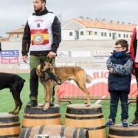 La XXIV Copa de España de Trabajo para Perros de Utilidad ya tiene ganadores