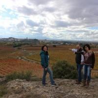 La ILP en Defensa del Paisaje Vitícola ya puede ser debatida en el Parlamento de La Rioja
